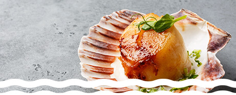 Scallop shell serving dish